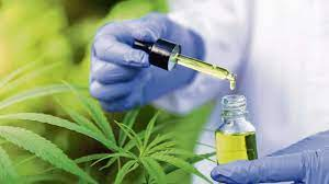 Surprising Facts You Didn't Know About CBD.